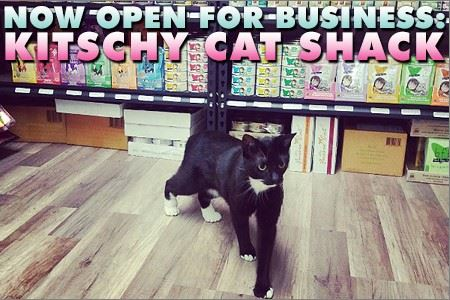 Kitschy Cat Shack